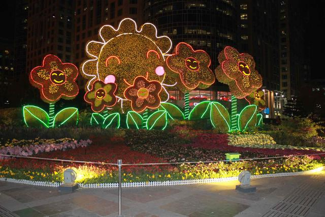 Beijing Smile Flowers.jpg